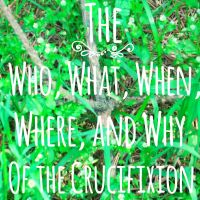 The Who What When Where and Why of the Crucifixion by 1234RoseSmith