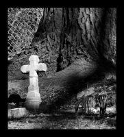 Child grave by tree by syrenemyst