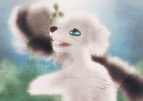 Janet the Poodle - Holly/Acebo by Hvan