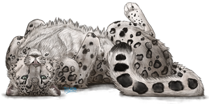 Snow Leopard by Riixon