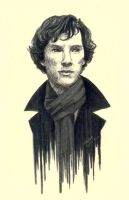 The Consulting Detective by ShadowSeason