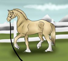 Autumn dressage training (on long lines) by Tuckerlyn