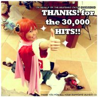 THANKS for the 30,000 HITS by JoLuffiroSauce