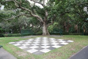 Large Chess board 3699 by fa-stock