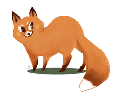 Fox cat by ACicco