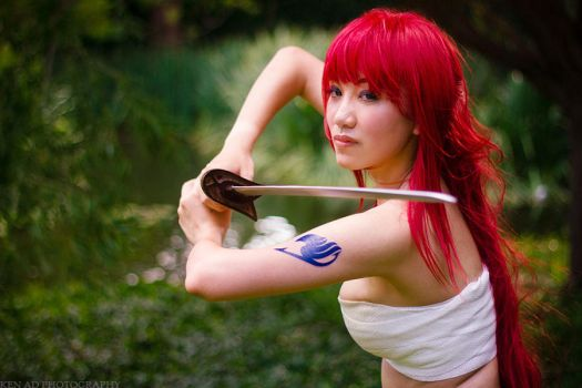 Erza Scarlet, Ready to Defend by firecloak
