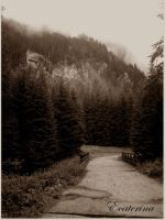the Tatras '10 - the path by Ecaterina13