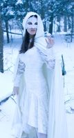 lace, snow, crystal hood turn by eyefeather-stock