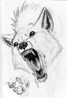 Scary Wolf Teeth etc. by AdmYrrek
