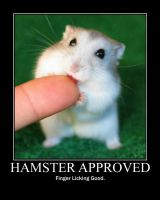 Motivation 33 - Hamster Approv by kclcmdr