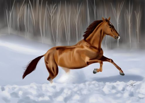 Horse in the snow by Shyphex