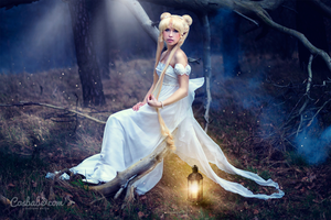Princess Serenity (Sailor Moon) III by Cosbabe