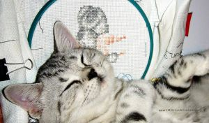 Mitya and Embroidery 2 by SoulcrackeD