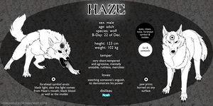 HAZE Ref Sheet 2013 by Fuchsbauu