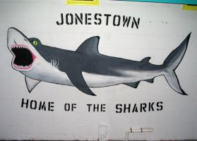 Shark Mural by curiousused