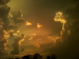 Golden Storm by Fl33tingshadoW