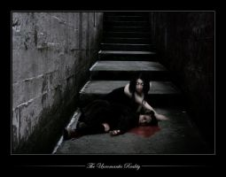 :: The Unromantic Reality :: by VermilionTears