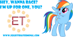 Rainbow Dash Display by thecoltalition