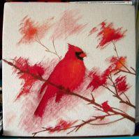 Cardenal del Norte by VitiS-Lololo