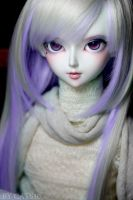 Face-up:LUTS Delf Dark-Elf-Soo by cats10
