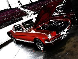 GT350 by PhotographiCreed