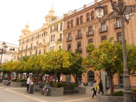 Trip to Cordoba by RoomSevilla