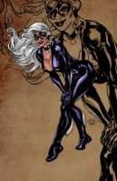 BlackCat by dnmn89
