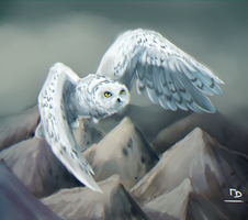 Snowy Owl by TigresaDaina