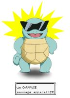 Commission, Squirtle by lxlx-lx-xlxl