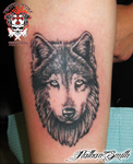 Wolf Head by NathanLeeSmith
