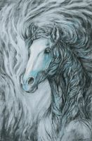 horse sketch by transe