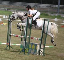 STOCK Showjumping 453 by aussiegal7