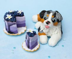 Blue Merle Aussie puppy with blueberry cake by SculptedPups