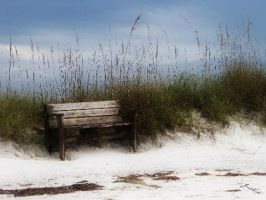 Honeymoon Island II by Boomagoo