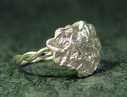 Silver Lining - Ring by StephaniePride