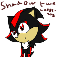 Shadow the hedgehog paint drawing -failed- by ShadowUkelover