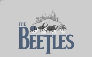 The Beetles by yamiryuk