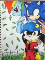 2-17-14 Sonic, Klonoa, Raindow Dash Birhtday Draw by emichaca