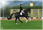 Calimero - AUSe Olympics Dressage by FamousFox