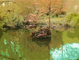 The Pond by Casperium