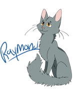 Raymond the cat by DoxySocks