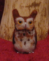 Teenie Tiny Screech Owl by DancingVulture
