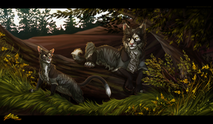 Two sides - Commission by Belka-1100
