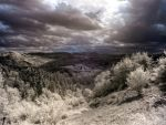 IR - Landscape by MaxArceus