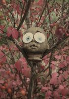Doll Head Spongebob Eyes Burning Bush by KeswickPinhead