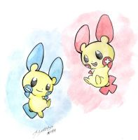 minun and plusle by Elizabetharte