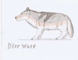 Dire Wolf drawing by TheSpiderAdventurer