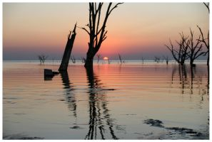 Drowned Trees Sunset 05 by michref