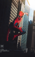 Spider-Man by ehnony