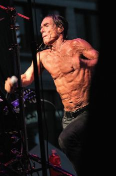 The Stooges:  Iggy Pop by basseca